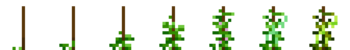 Greenbean (Phases).png